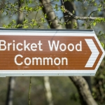 Tranquil walks on Bricket Wood common are easily accessible from Bricket Wood station