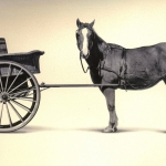 Demand forecasts – putting the cart before the horse?